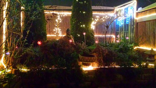 Color night lights, A Garden for the Buddha, Seattle, Washington,  USA by Wonderlane