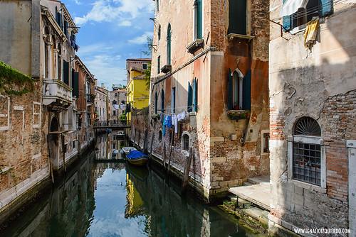 Venice 49