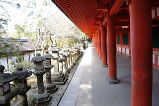 Red pillars of Kasuga-Taisha Shinto Shrine.