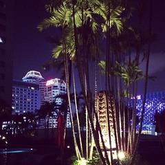 1am chillin' #bangkok #thailand