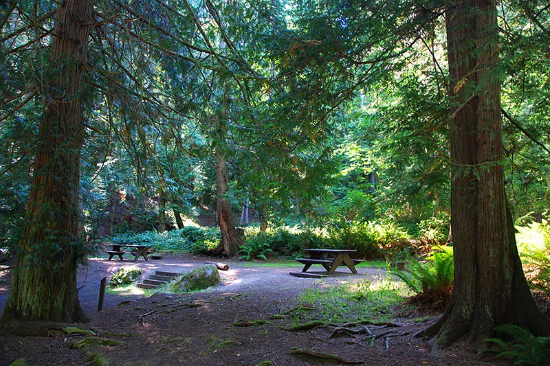 Prior Centennial Campground, North Pender Island, Gulf Islands National Park, British Columbia, Canada