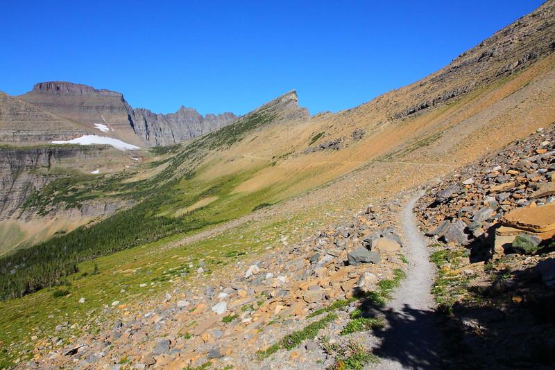 IMG_3754 Piegan Pass Trail