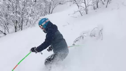 Abby Powder skiing