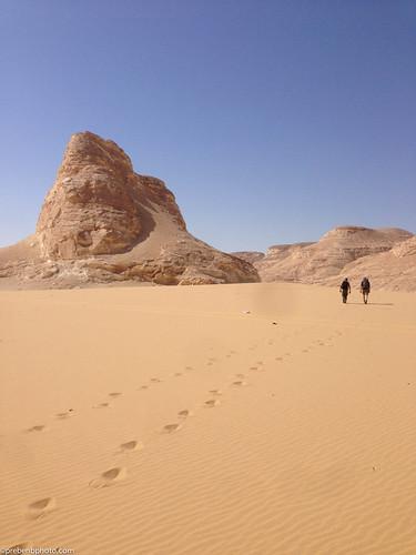 egypt whitedesert assiut