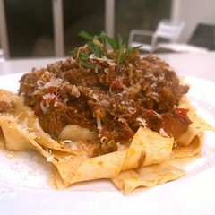 pappardelle, meat, food, dish, cuisine,
