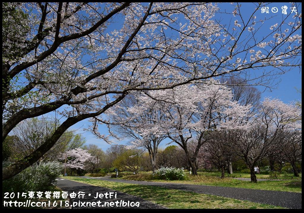 2015東京賞櫻自由行‧JetFiDSC_3409