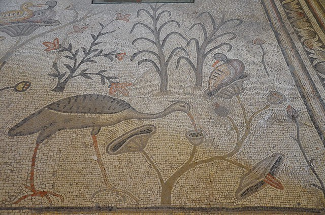 5th century AD restored mosaic pavement in the Church of the Multiplication depicting various wetland birds and plants, the earliest known examples of figured pavement in Christian art in the Holy Land, Tabgha, Galilee