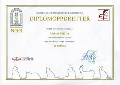 Diplomoppdretter