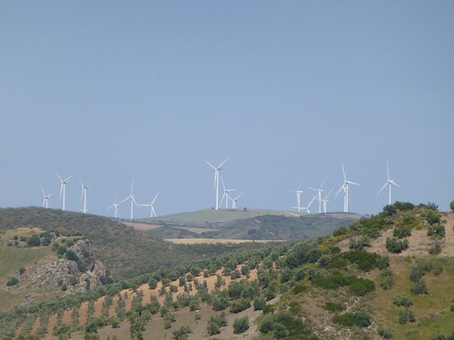Cortijo Rosario: wind turbines on horizon