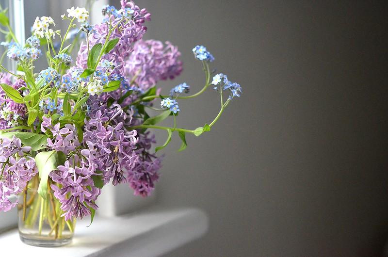 spring flowers_561