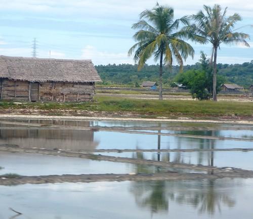 Makassar-Bira-Minivan (57)