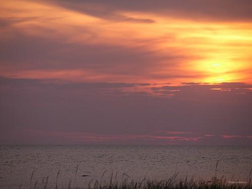 Gryteskär Sunset