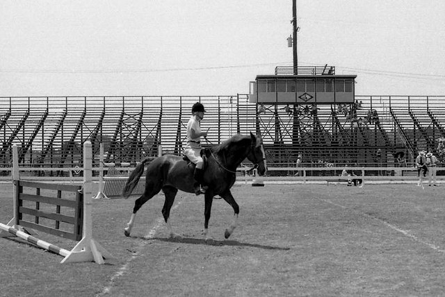 Lower Richland Horse Show, ca. 1974