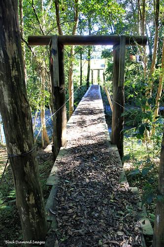 Footbridge Over The Lansdowne River, Coxcomb Rd, Upper Lansdowne, Manning Valley, NSW