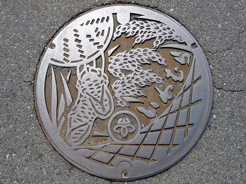 Iwamura Gifu , manhole cover 2 (岐阜県岩村町のマンホール2)