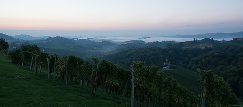 fog sunrise nikon nebel vineyards nikkor sonnenaufgang vr afs eckberg weinberge südsteiermark 1685 d7100 southstyria