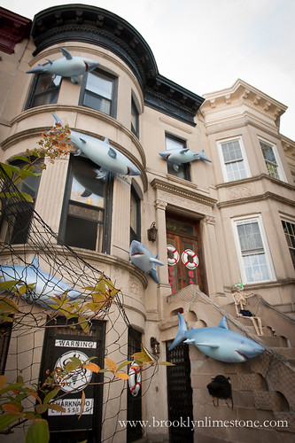 SharknadoHouse20131014-2-2