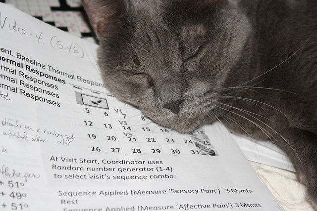 Shadow dreaming of data management for clinical research