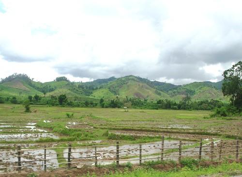 Houaisai-Luang Namtha-route (6)