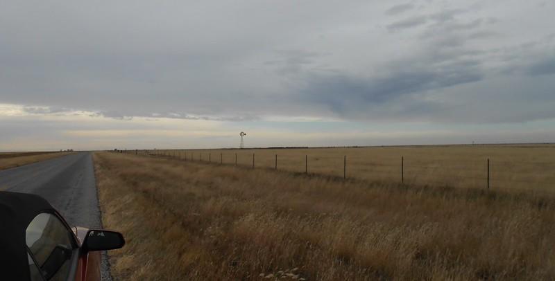 grassland in Texas