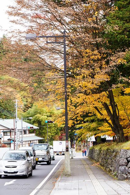 日光 田母澤御用邸紀念公園