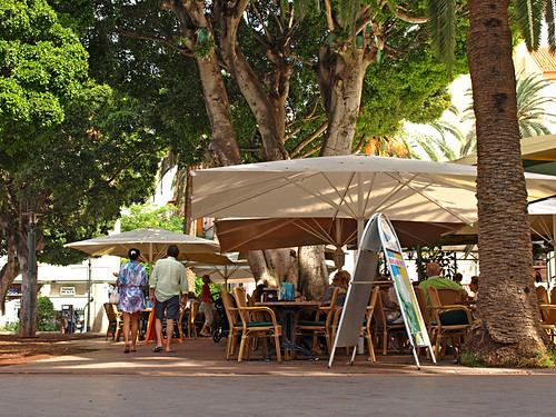 Bar, Plaza Charco, Puerto de la Cruz, Tenerife