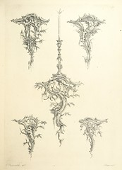 """British Library digitised image from page 117 of """"Old English and French ornaments; comprising 244 Designs ... by Chippendale, I. Jones, Johnson, Lock, and Pether ... Collected and republished by J. W"""""""