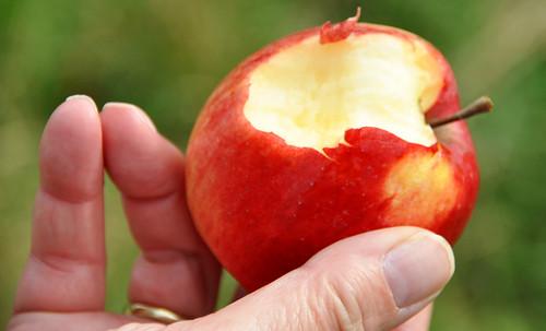 Apfel frisch angebissen anbeißen gesunde Vitamine naschen