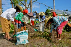 Philippines: Clearing up after Typhoon Haiyan