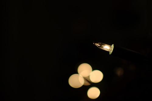 Those Christmas Lights....
