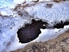 Ice at Skógafoss