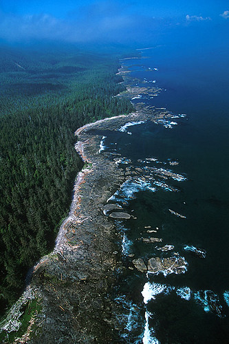 Brooks Peninsula, Vancouver Island, British Columbia, Canada