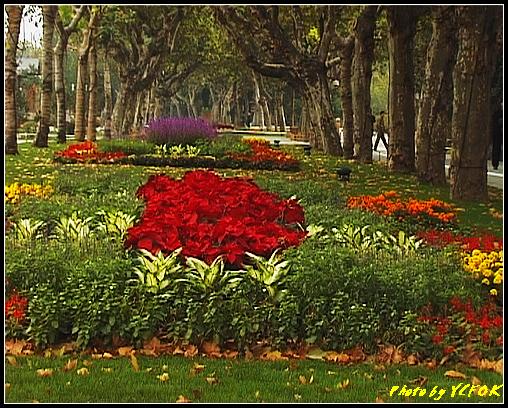 杭州 西湖 (其他景點) - 085 (湖濱路的湖畔花園)