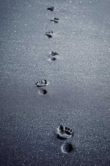 ~ Footprints ~