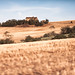 Italy / Landscape / Rural Country / Wonderful scenery by .Gianluca