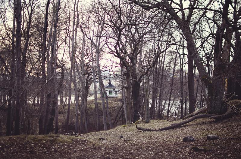 Precis runt hörnet bor skogen.