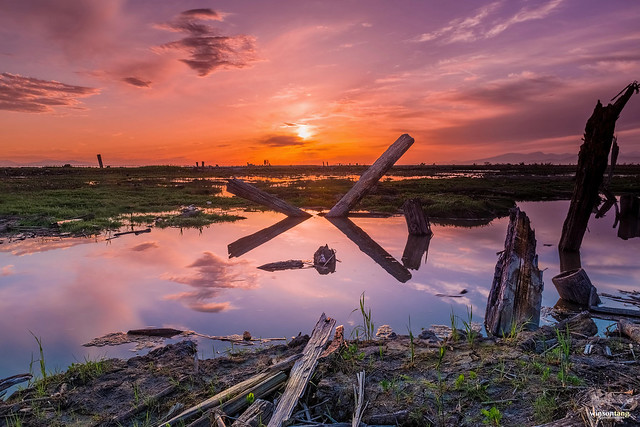 Winson Tang Photocreative - Sunset Terra Nova, Richmond BC, Canada