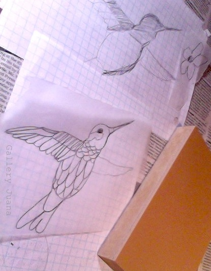 hummingbird drawings for linocut by gallery juana