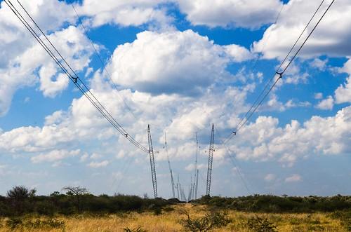 Poteaux électriques à travers la savane namibienne