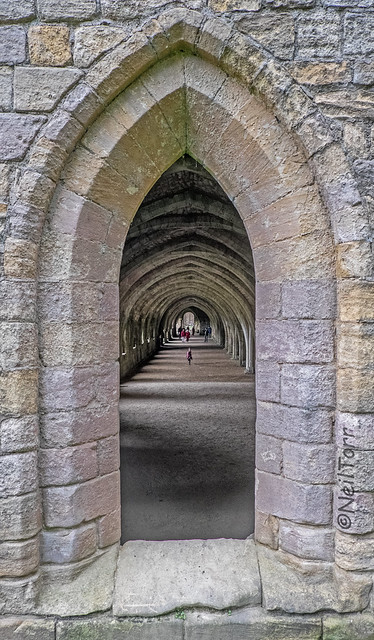 Fountains Abbey Cellarium and Refectory