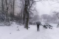 Man & Snow