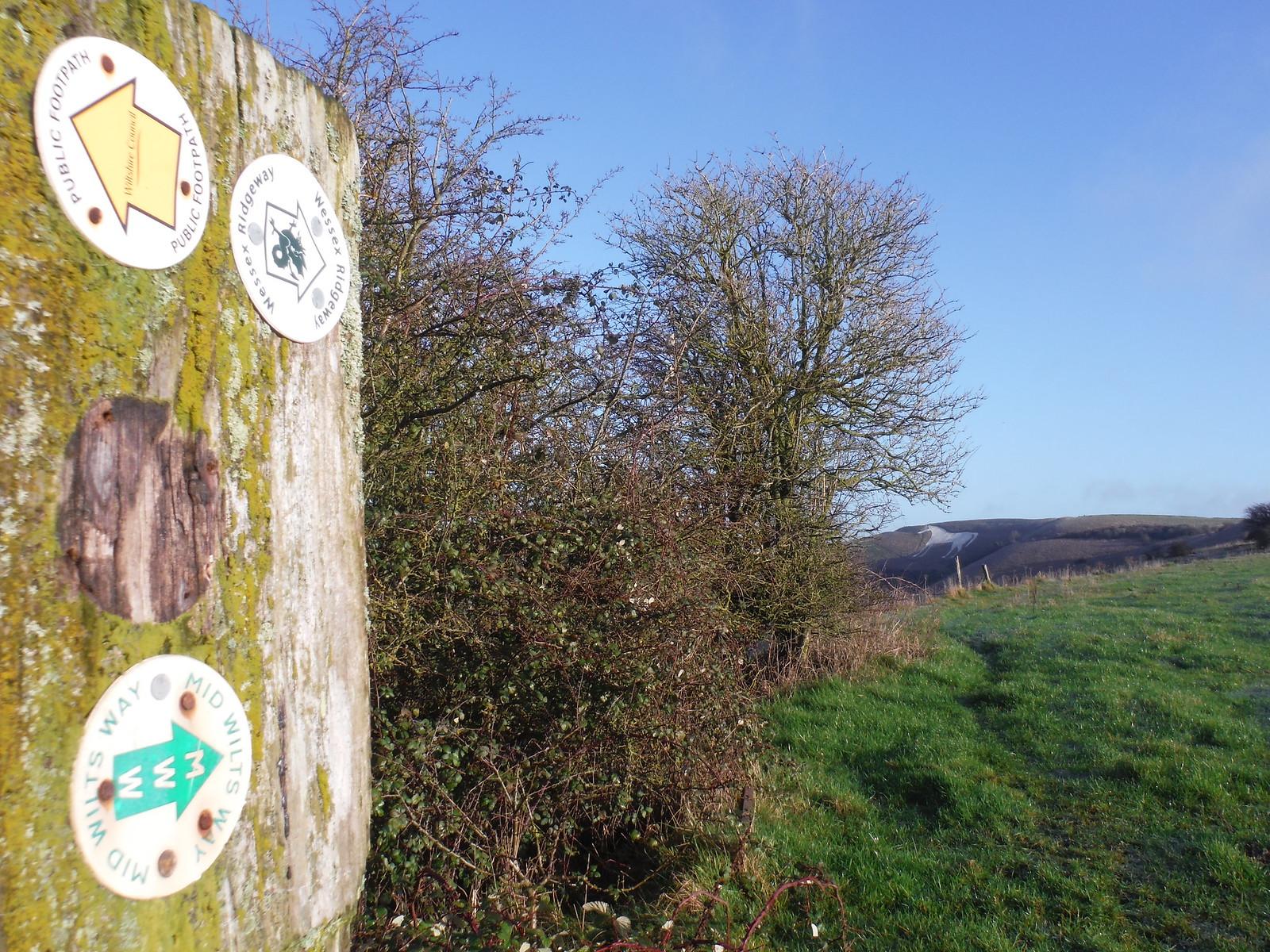Waymarkers on Westbury Hill SWC Walk 286 Westbury to Warminster (via Imber Range)