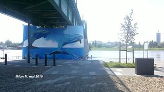 Mural Delfini na stubu Satari savski most (Tramvajskog mosta), Beograd maj 2016