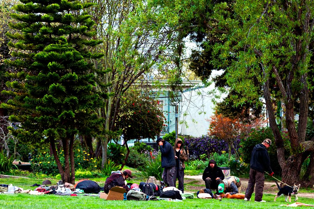 People's-Park-in-3-13--Berkeley