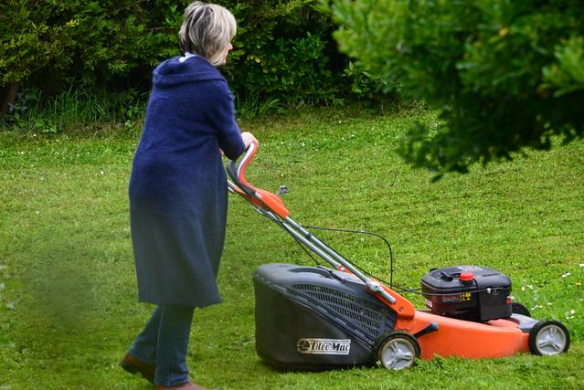 tondre la pelouse explore flikkersteph 3 000 000 views t flickr photo sharing