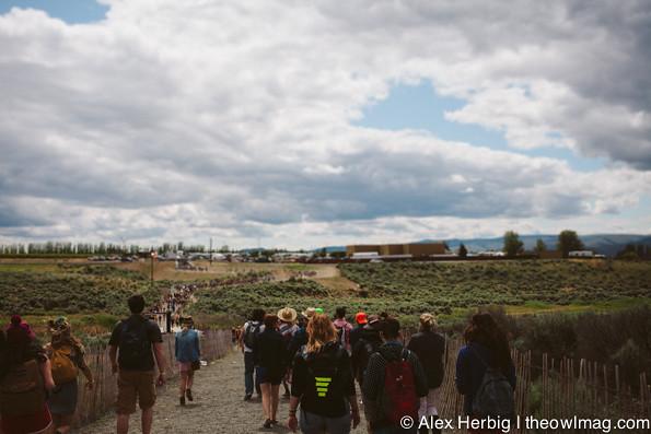 Sasquatch Music Festival 2013