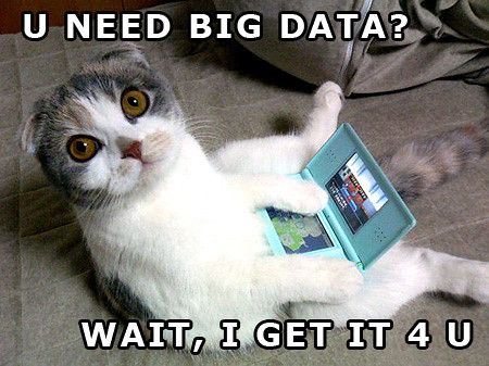 big-data-kitty by WilliamBanzai7/Colonel Flick