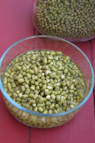 soaking mung beans IMG_0024