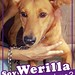 werilla