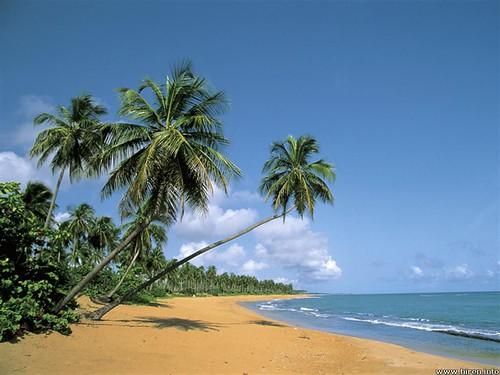 puertorico guánica playaballenas